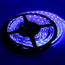 LED pásek modrá délka 1 metr, SMD 5050, 60LED/m - nevodotěsný STRF 5050-60-B