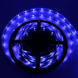 LED pásek modrá délka 1 metr, SMD 5050, 30LED/m - nevodotěsný STRF 5050-30-B