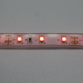 LED pásek červená, SMD 3528, 60LED/m (balení 5m) - vodotěsný (silikon) STRF 3528-60-R-IP66